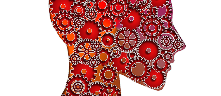 A head of cogs