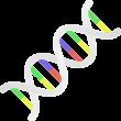 Genomics Lite - human genetics variation series