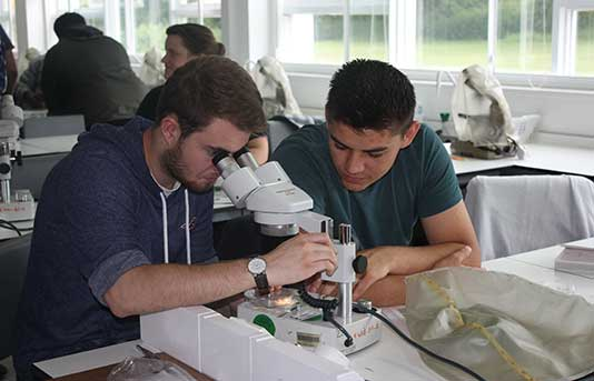 students in the lab at bayfordbury