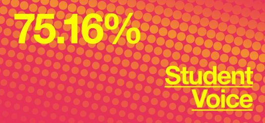 University of Hertfordshire courses receive high student satisfaction in latest NSS results