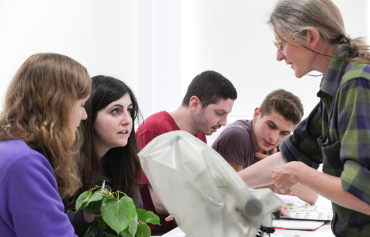 Lecturer showing plants