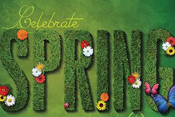 dHPO - Spring Celebrations