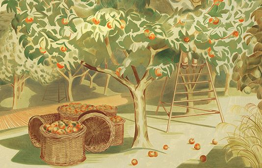 The Apples and Orchards of Essex