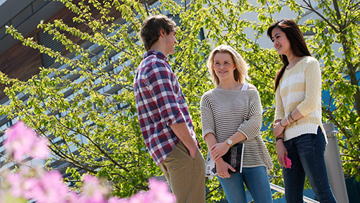 Three students chat on campus