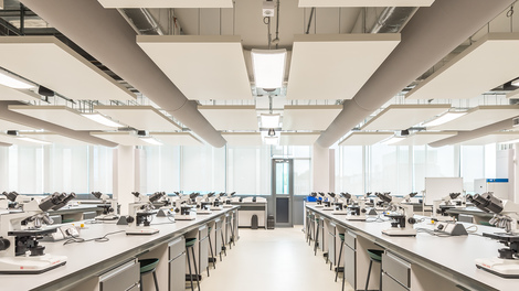 Research-informed teaching, with practical work in modern labs