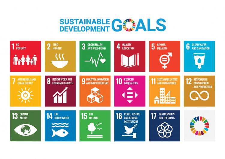 European sustainability goals