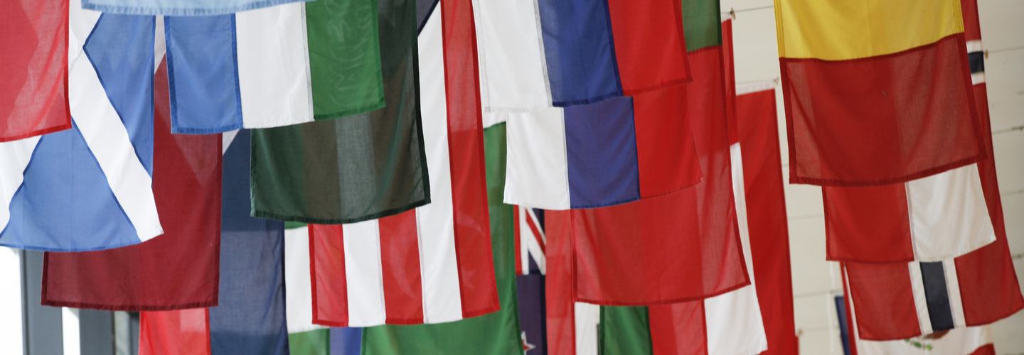 A selection of flags