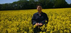 Field adult plant disease resistance can be assessed in young oilseed rape plants