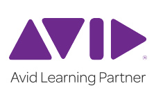 AVID purple logo