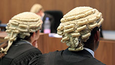 Students in law wigs