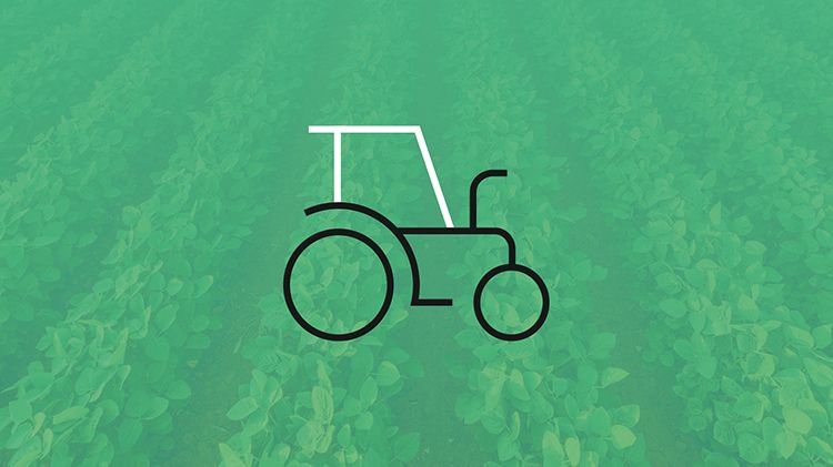 Key facts: from farm to fork