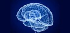 Targeted deep brain stimulation reduces OCD symptoms