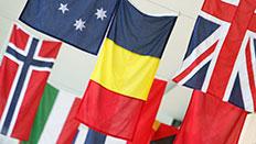 Flags on de Havilland