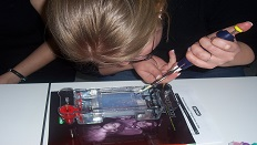 Continuing professional development (CPD) in STEM subjects
