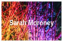 Sarah Moroney