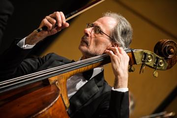 dHPO String Quartet – Lunchtime Recital
