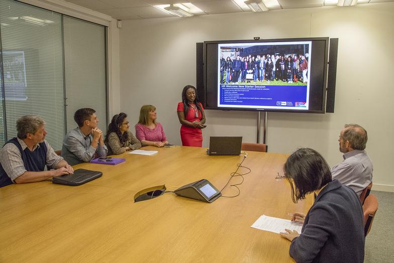 Women and men in meeting